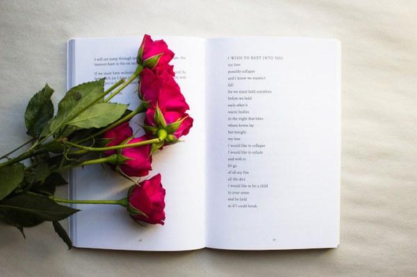 Revue de poésie - lead image