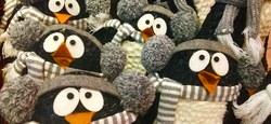 Les drôles de questions de petit pingouin - Sélection d'Eva